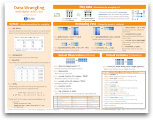 Data wrangling cheatsheet